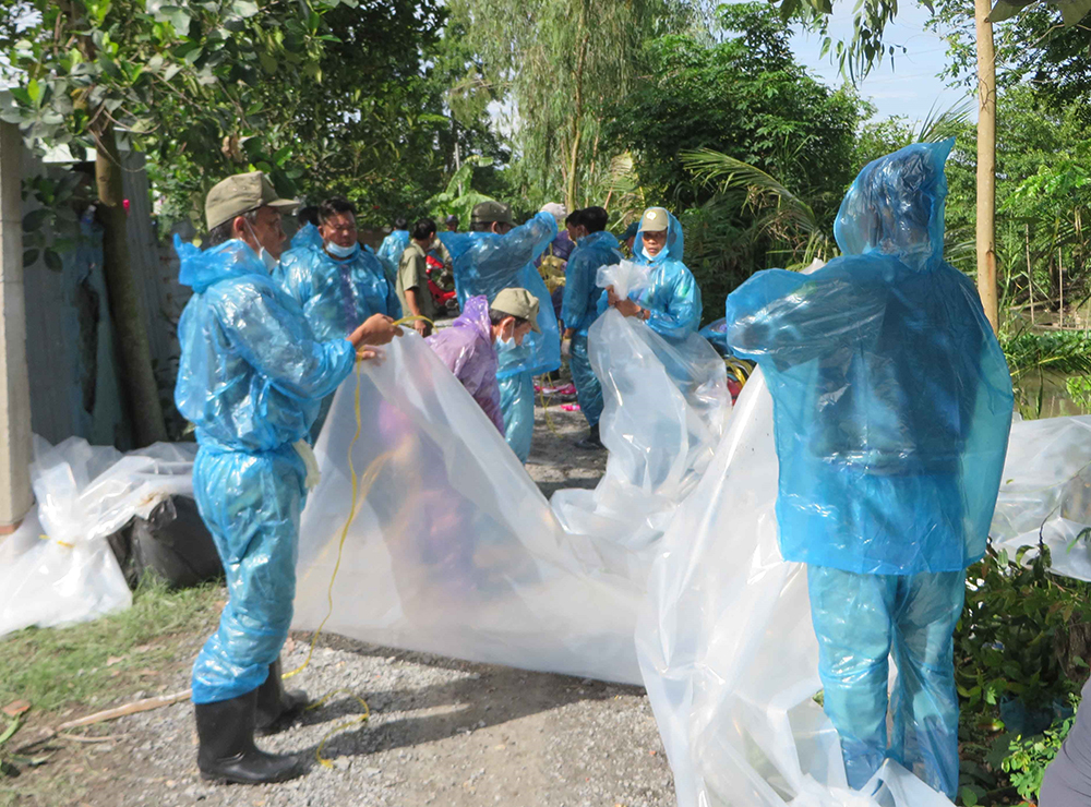Cẩn trọng với các nguồn lây nhiễm bệnh dịch tả heo Châu Phi
