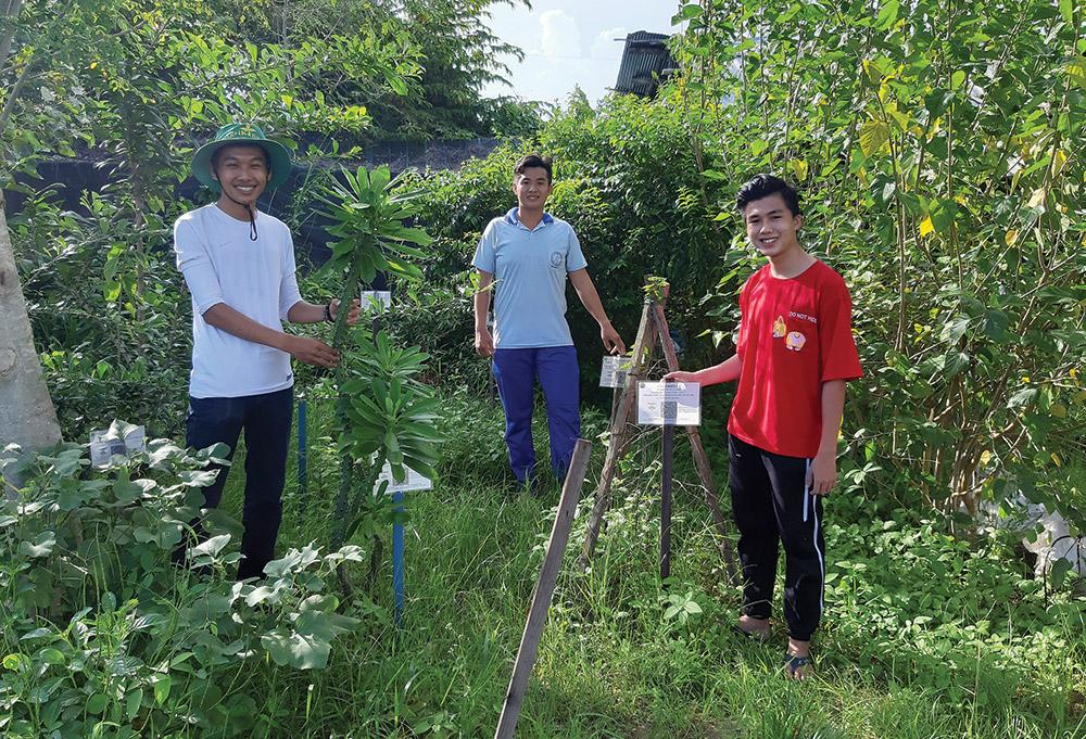 Các thành viên Câu lạc bộ vườn thuốc nam luôn say mê với công việc