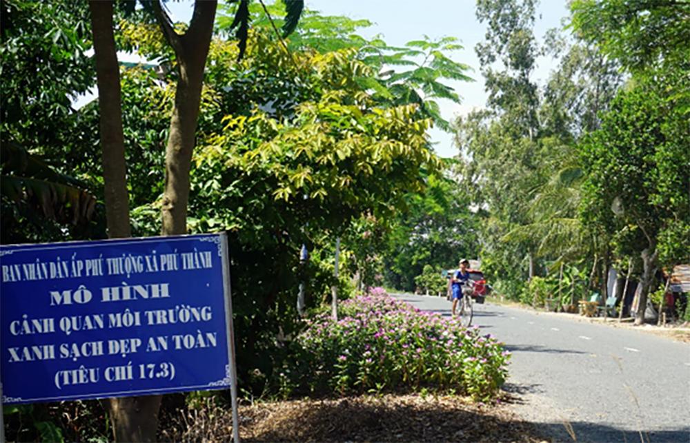 Rực rỡ đường hoa nông thôn Phú Thành