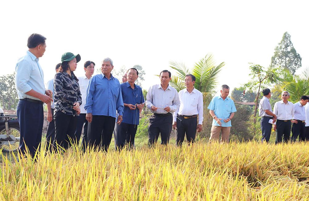 Bí thư Tỉnh ủy Võ Thị Ánh Xuân làm việc về tình hình sản xuất và tiêu thụ nông sản ở Phú Tân