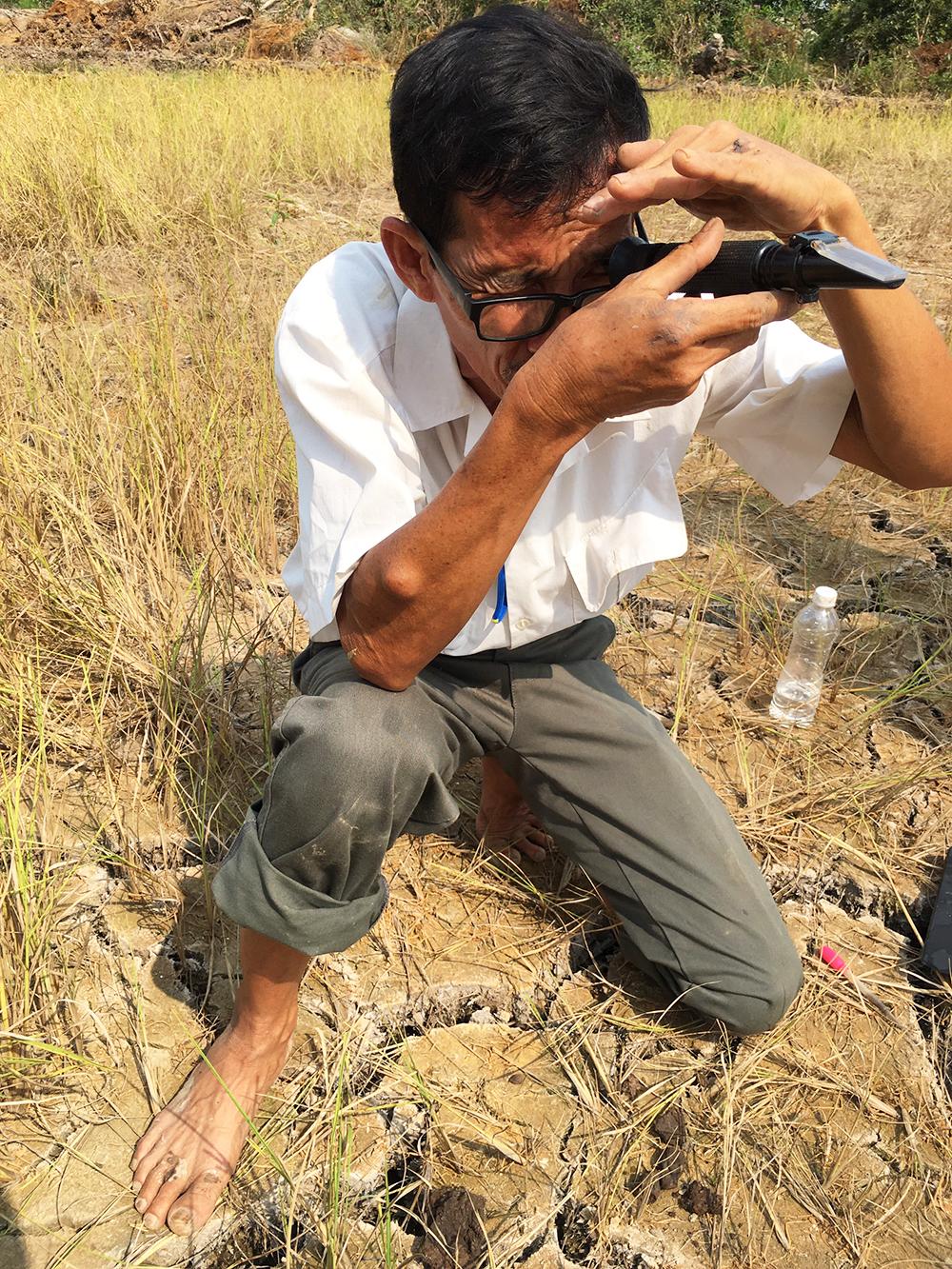 """""""Lão Hiền"""" - người giữ màu xanh cho lúa - Kỳ 1: Rong ruổi trên những cánh đồng """"chết"""""""