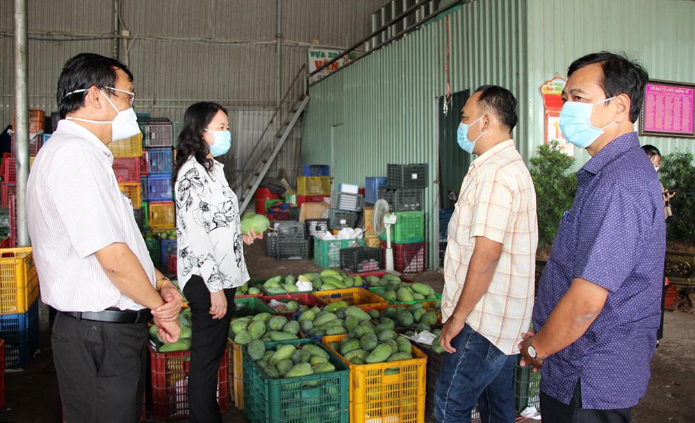Bí thư Tỉnh ủy An Giang Võ Thị Ánh Xuân khảo sát tình hình sản xuất, tiêu thụ nông sản trên địa bàn huyện Chợ Mới