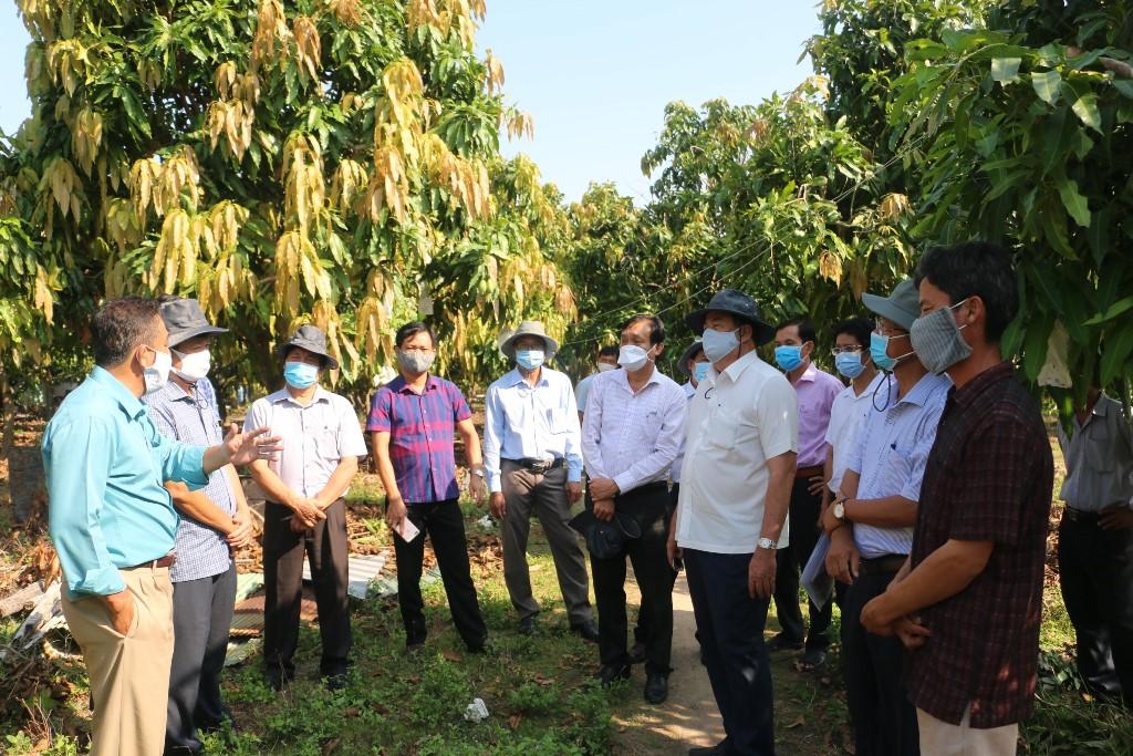 Ứng dụng công nghệ sinh học vào sản xuất nông nghiệp
