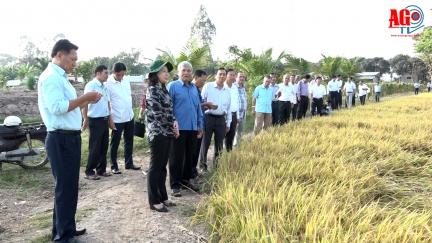 Bí thư Tỉnh ủy Võ Thị Ánh Xuân làm việc về tình hình sản xuất và tiêu thụ nông, thủy sản ở huyện Phú Tân