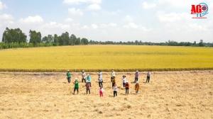Nông dân Thoại Sơn kêu gọi cộng đồng chung tay phòng, chống dịch Covid-19
