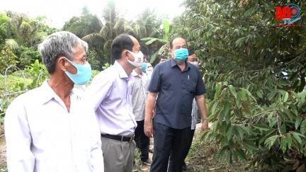 Chủ tịch UBND tỉnh Nguyễn Thanh Bình làm việc tại huyện Châu Phú về tình hình sản xuất, tiêu thụ nông sản