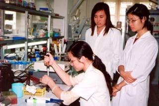 Phân tầng đại học: Thêm giải pháp tạo nguồn nhân lực