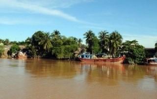 Bóng má trên cù lao Phú Phong