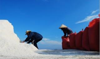 """<font size=""""2"""">Những bãi biển tuyệt đẹp, cánh đồng muối bao la, sông  Trà thơ mộng, núi Thiên Ấn hùng vĩ đưa bạn đến """"xứ ngọt mía đường"""" Quảng  Ngãi.</font>"""