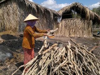 """<font size=""""2"""">Mỗi năm, ĐBSCL làm ra hơn 50% sản lượng  lương thực quốc gia, đóng góp tới 70% kim ngạch xuất khẩu thủy sản của  cả nước và 90% lượng gạo xuất khẩu, đưa VN thành nước xuất khẩu gạo hàng  đầu thế giới. Thế nhưng, khu vực này vẫn cứ loay hoay trong nghèo khó.  Phải thấy rõ hiện trạng và phá dỡ những lực cản để ĐBSCL phát triển.</font>"""