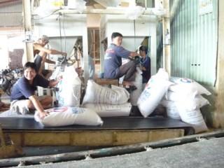 Tiền Giang: Xuất khẩu gạo tiểu ngạch- Lượng và giá trị tăng nhưng tiềm ẩn rủi ro