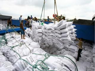 Giá lúa Đông Xuân tăng 100-200 đồng/kg nhờ tạm trữ
