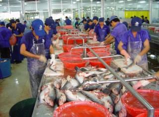 Gặp khó vì quy định chất lượng sản phẩm xuất khẩu