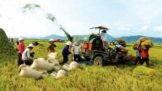 MDEC - Sóc Trăng 2014: Tái cơ cấu nông nghiệp - xây dựng nông thôn mới