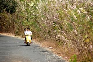 Cẩm nang du lịch thành phố biển Vũng Tàu