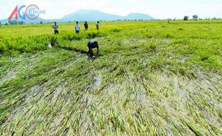 Thủy điện trên sông Mê Kông - Kỳ cuối: Hợp sức ứng phó