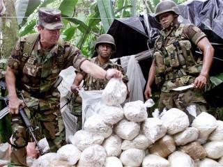 Colombia thu giữ hơn 3 tấn cần sa khi trấn áp tội phạm ma túy