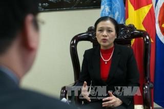Việt Nam tiếp tục tham gia sâu rộng các hoạt động của LHQ
