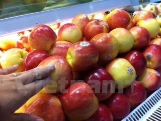 Vi khuẩn có trong táo nhập khẩu từ Hoa Kỳ nguy hiểm như thế nào?