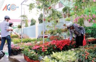 Rộn ràng chợ hoa Xuân