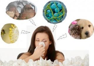 Viêm mũi dị ứng: Bệnh gây nhiều phiền toái