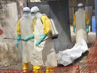 UNDP: Toàn khu vực Tây Phi thiệt hại nặng nề do dịch Ebola