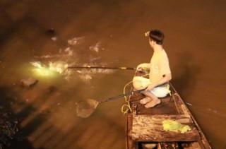 Phập phồng lo cá không trụ nổi vì đánh bắt tận diệt