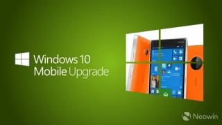 Sẽ không có làn sóng cập nhật Windows 10 Mobile thứ hai