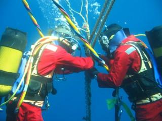 Bảo trì cáp quang biển, truy cập internet có thể bị gián đoạn