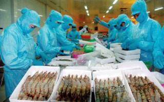 Tiềm năng lớn để Việt Nam là thủ phủ tôm thế giới
