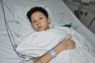 Lần đầu tiên Việt Nam ghép tim thành công từ người lớn sang bệnh nhi nhỏ tuổi