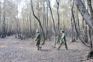 Bảo vệ rừng mùa lễ hội