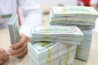 Huy động vốn từ USD trong dân