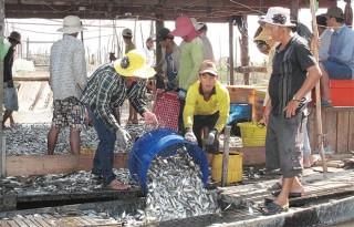 Bảo vệ nguồn lợi thủy sản là trách nhiệm của toàn dân