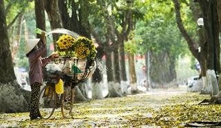 """Du khách Việt """"sốt xình xịch"""" với những điểm ngắm mùa thu tuyệt đẹp"""