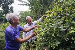 Phú Tân chuyển đổi kinh tế nông nghiệp