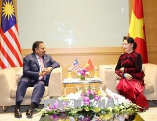 Chủ tịch Quốc hội Nguyễn Thị Kim Ngân tiếp Chủ tịch Thượng viện Malaysia