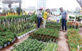 Chợ hoa xuân có gì mới?
