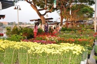 Khởi động chợ hoa Xuân 2018
