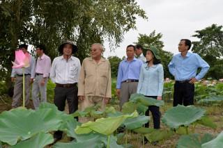 Châu Thành nâng chất lượng hoạt động hội và phong trào nông dân