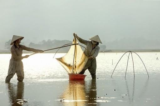Vẻ đẹp tảo tần của phụ nữ Việt Nam trong lao động