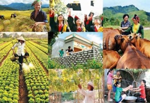 Đồng bộ các giải pháp xây dựng nông thôn mới và giảm nghèo