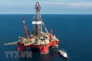Giá dầu tăng tại châu Á do khả năng dự trữ dầu thô của Mỹ giảm
