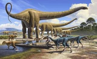 Khủng long vẫn tồn tại 30.000 năm trước – câu hỏi lớn cho thuyết tiến hóa