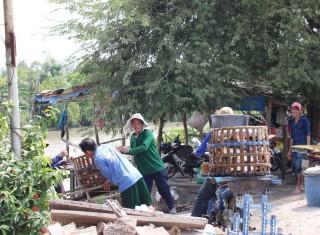 Tập trung hoàn thành nhiệm vụ ngành nông nghiệp