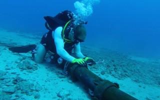 Cáp quang biển AAG dự kiến sẽ được 'hồi phục' vào ngày 9-9