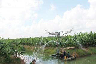 Thu hút đầu tư vào các dự án nông nghiệp lớn