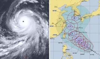 Sau bão Trami, Nhật Bản lại đối mặt siêu bão Kong-rey