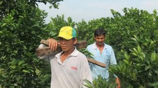 Nông dân miền núi khó tiếp cận nguồn vốn vay