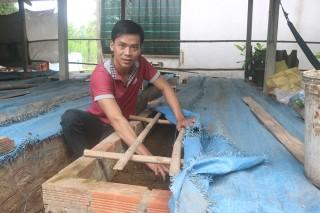 Phát triển kinh tế gia đình từ nuôi trùn quế